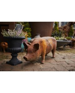 Cast Iron Standing Sow/Pig Statue In Rust
