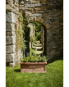 Heritage Collection Terracini Patterned Trough 50cm